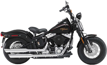 H-D SOFTAIL CROSS BONES