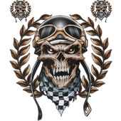 DECAL RACING SKULL PIECE