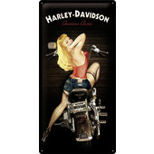 TIN SIGN H+D *BIKER BABE*
