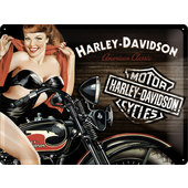 TIN-SIGN H-D *AMERICAN CLASSIC*, 400X300MM