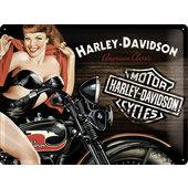 Targa metallica Harley-Davidson American
