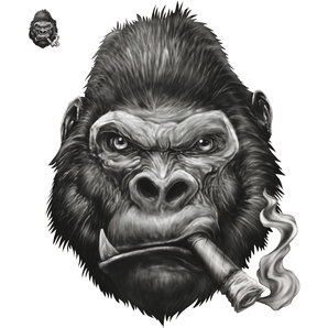 DECAL GORILLA