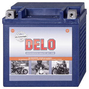 BATTERIE GEL DELO HD